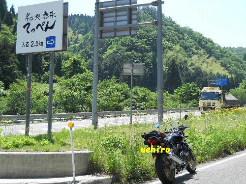 Haruki_7