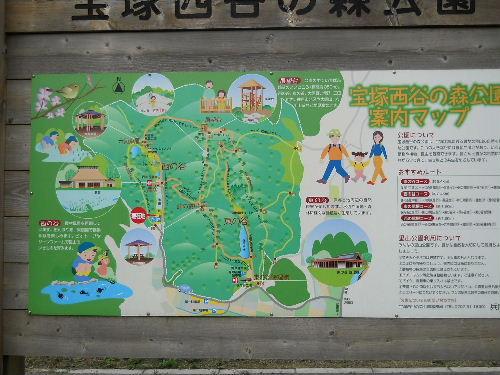 Monkey_5_2