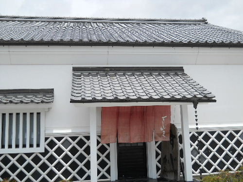Sujikama_16