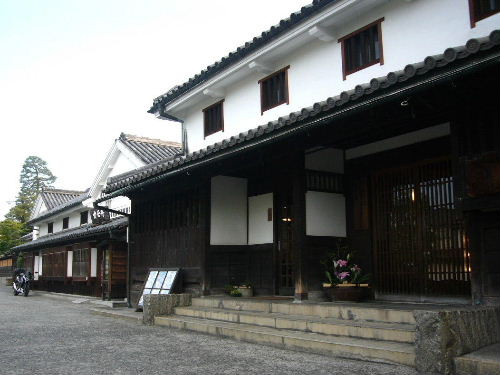 Kura311