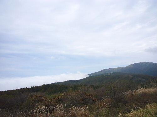 Hodaka1_50