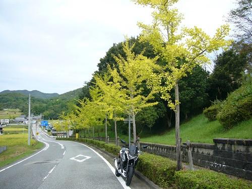 Ippukudou23