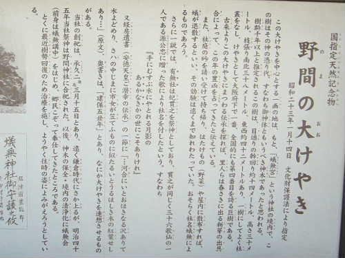 Hontaki_26