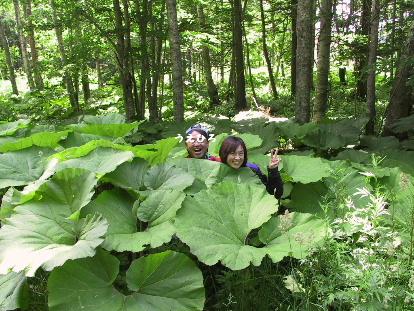 阿寒湖・北海道で知り合った大阪のお姉さんライダー